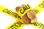 gluten_sensitivity_versus_celiac_disease